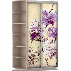 Шкаф-купе Хит Фото Цветы